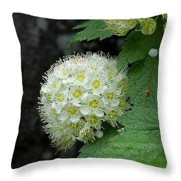 Throw Pillow featuring the photograph Flower Ball by Rod Wiens