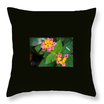 Flower Bloom Throw Pillow