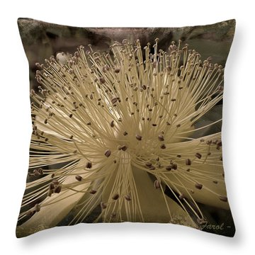 Adventure In Grey Throw Pillow by Farol Tomson