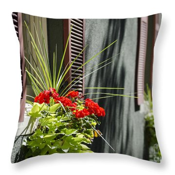 Flower Box Throw Pillow by Andrea Silies