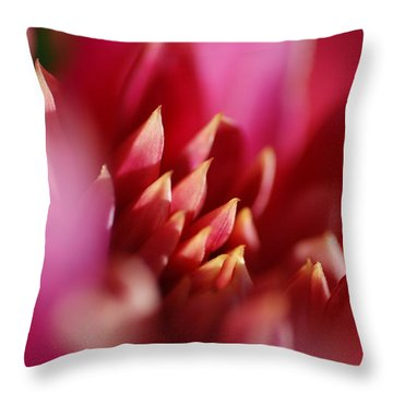 Flower Close Up Throw Pillow by Catherine Lau