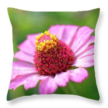Flower Close-up Throw Pillow