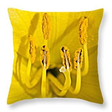 Flower Detail Throw Pillow