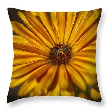The Flower Inspector Throw Pillow