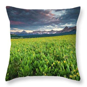 Flower Field And Sneffels Range Throw Pillow