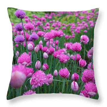 Whistler, British Columbia Throw Pillow