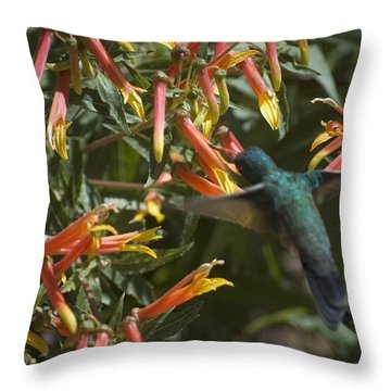 Flower Has To Bloom, Bird Has To Eat Throw Pillow