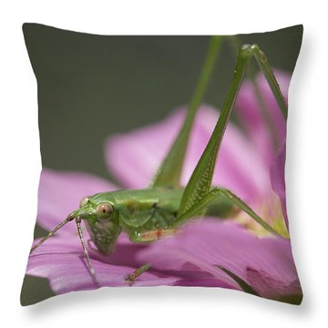Flower Hopper Throw Pillow
