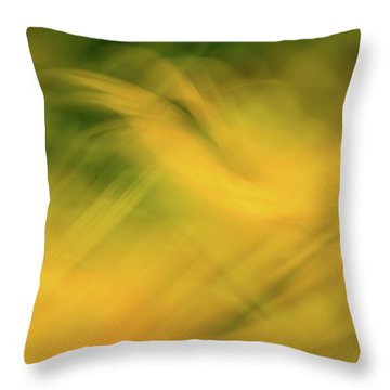Flower Of Fire 4 Throw Pillow