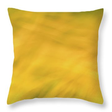 Flower Of Fire 6 Throw Pillow