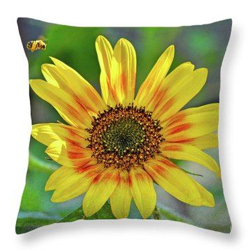 Throw Pillow featuring the photograph Flower Of The Sun by Kerri Farley