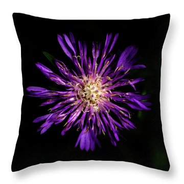 Flower Or Firework Throw Pillow