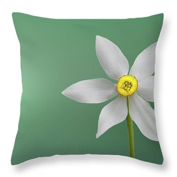 Flower Paradise Throw Pillow by Bess Hamiti