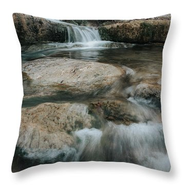 Throw Pillow featuring the photograph Flower Park by Iris Greenwell