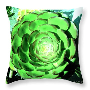 Throw Pillow featuring the photograph Flower Pattern Of Life by Vanessa Palomino