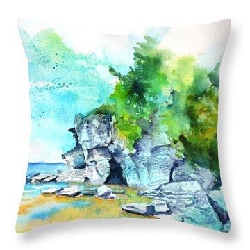 Flower Pot Island Throw Pillow