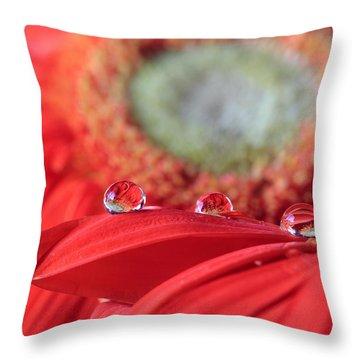 Flower Reflections Throw Pillow