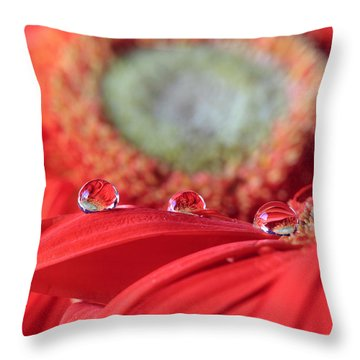 Flower Reflections Throw Pillow