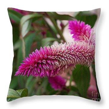 Throw Pillow featuring the photograph Flower Selfie  by John S
