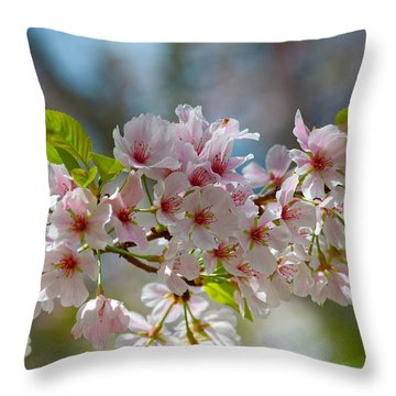 Flower Spray Throw Pillow by Linda Brown