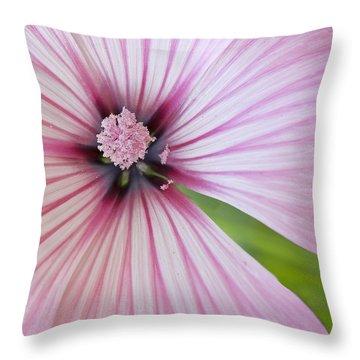 Throw Pillow featuring the photograph Flower Star by Elvira Butler