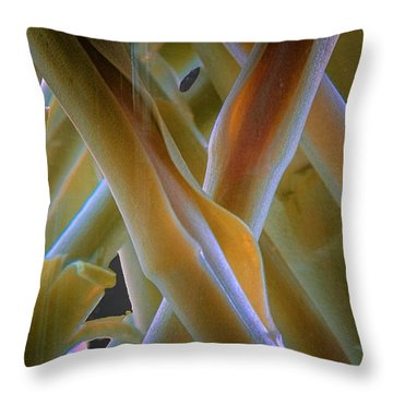 Throw Pillow featuring the photograph Flower Stems by Tom Singleton