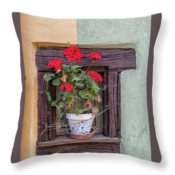 Throw Pillow featuring the photograph Flower Still Life by Alan Toepfer