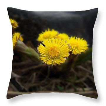 Flower Weed Throw Pillow by Svetlana Sewell