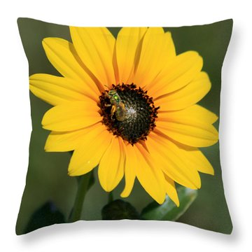 Flower With Bee Throw Pillow by George Jones