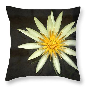 Flowerburst Throw Pillow by Joe Bonita