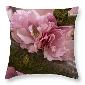 Flowering Almond I Throw Pillow