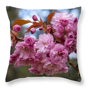 Flowering Almond II Throw Pillow