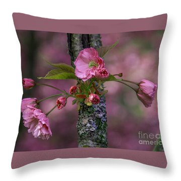 Flowering Almond Iv Throw Pillow