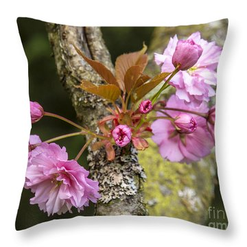 Flowering Almond V Throw Pillow