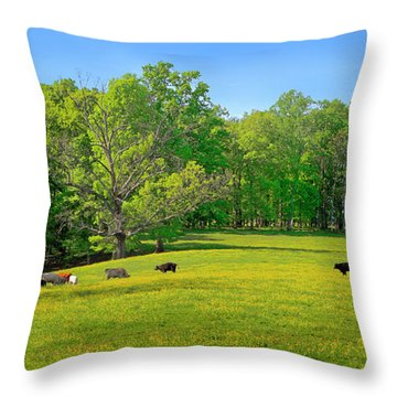 Flowering Cow Pasture Throw Pillow