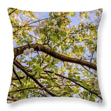 Flowering Crab Apple Throw Pillow