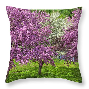 Flowering Crabapples Throw Pillow