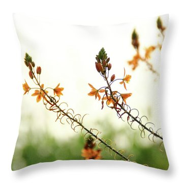 Flowering In Israel At The Sunset Throw Pillow by Yoel Koskas