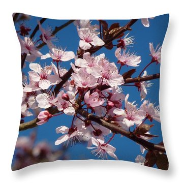 Flowering Of The Plum Tree 5 Throw Pillow by Jean Bernard Roussilhe