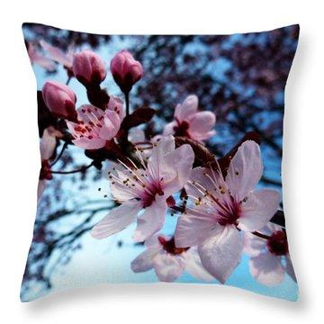 Flowering Of The Plum Tree 6 Throw Pillow by Jean Bernard Roussilhe