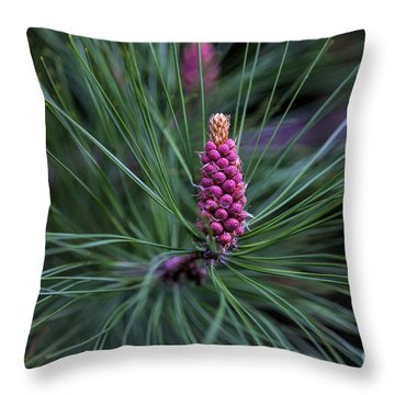 Flowering Pine Cone Throw Pillow