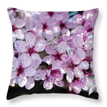 Flowering Plum Throw Pillow