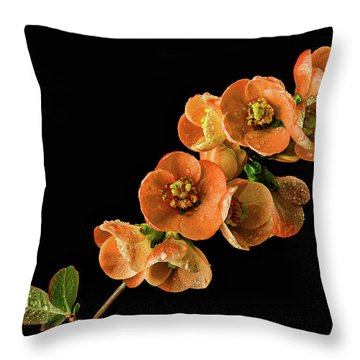 Throw Pillow featuring the photograph Flowering Quince Orange by Mary Jo Allen