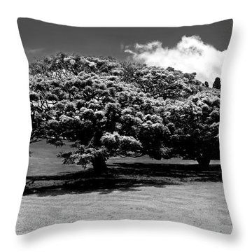 Flowering Trees In Maui Throw Pillow