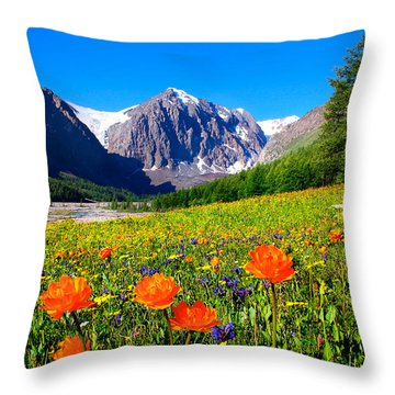 Flowering Valley. Mountain Karatash Throw Pillow