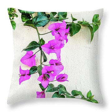 Throw Pillow featuring the photograph Flowering Vine On A Mexican Wall by David Perry Lawrence