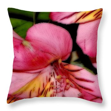 Flowers # 8728_1 Throw Pillow by Barbara Tristan