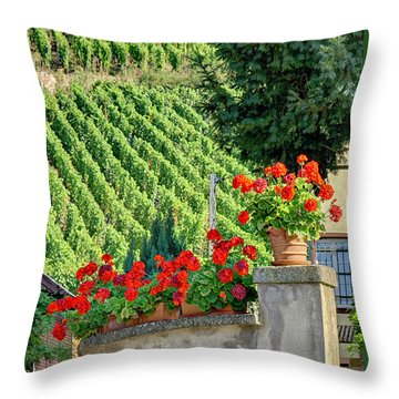Throw Pillow featuring the photograph Flowers And Vines by Alan Toepfer