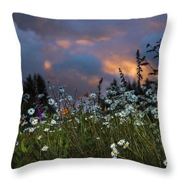 Flowers At Sunset Throw Pillow