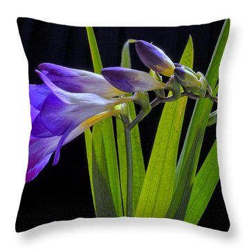 Flowers Backlite. Throw Pillow